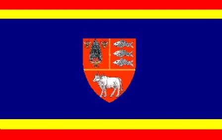 Steag judetul Vaslui