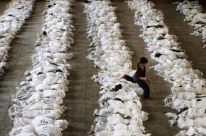 Copil cadavre Irak