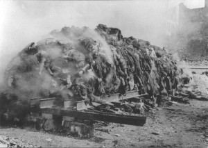 Dresda dupa bombardament mortii