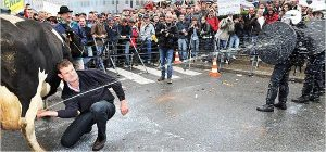 Fermier britanic protest lapte vaca politist