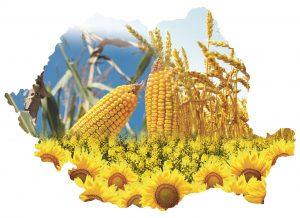 romania-agricultura